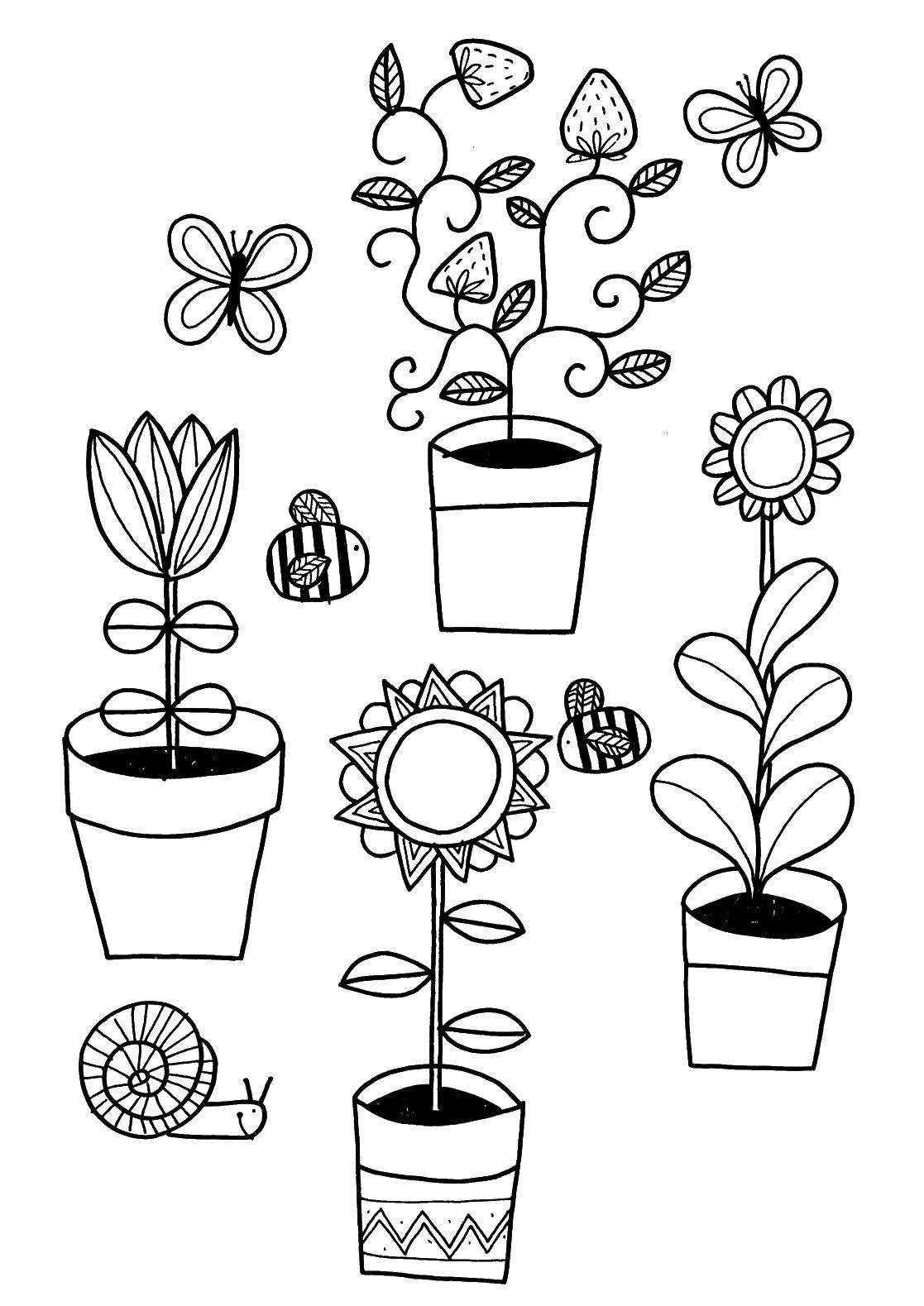 картинка цветочный горшок с растением раскраска для