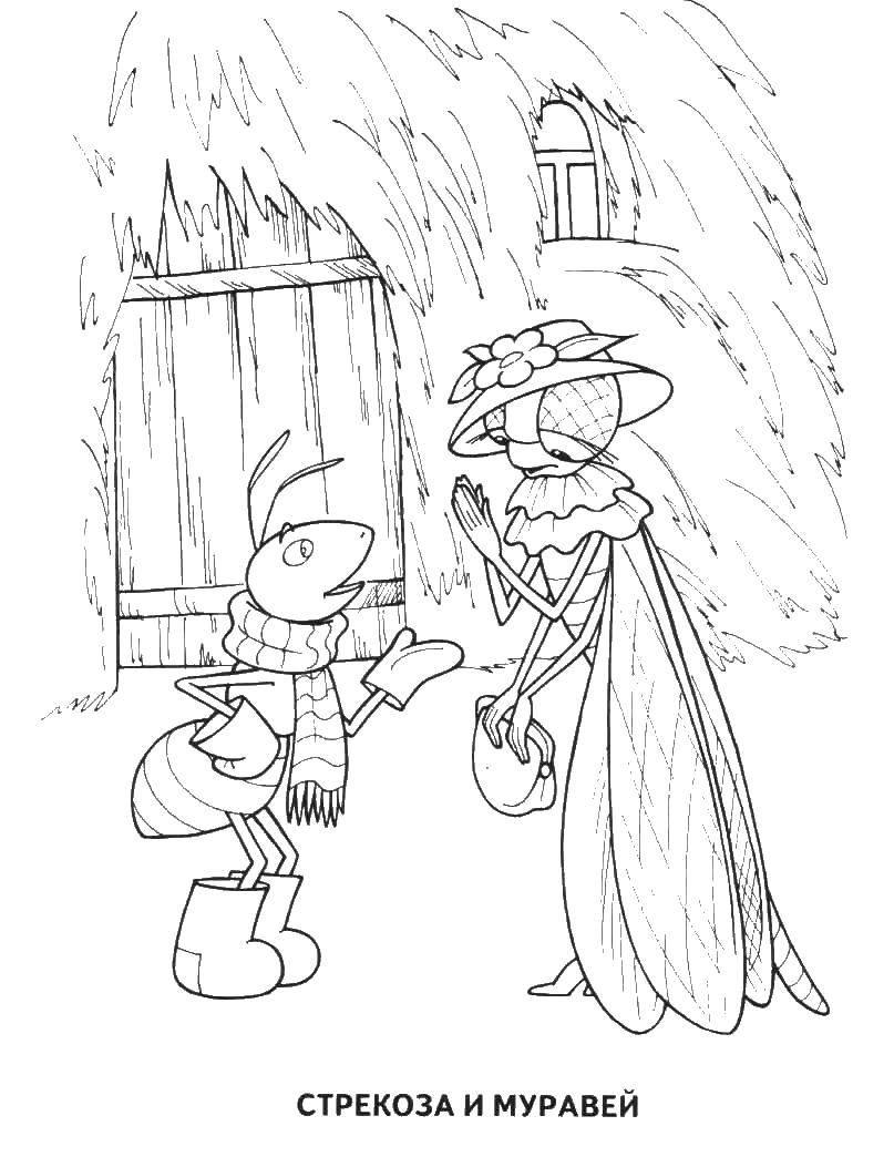 Раскраска Стрекоза и муравей Скачать ,сказки, Стрекоза и Муравей,.  Распечатать
