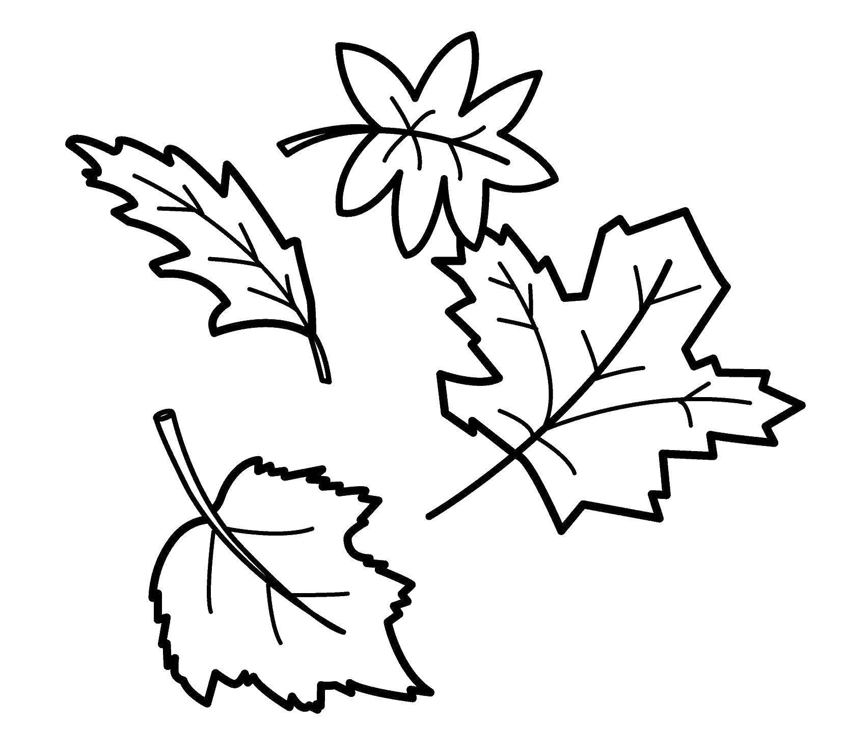 печать чехлах картинка раскраска осенний лист бревен