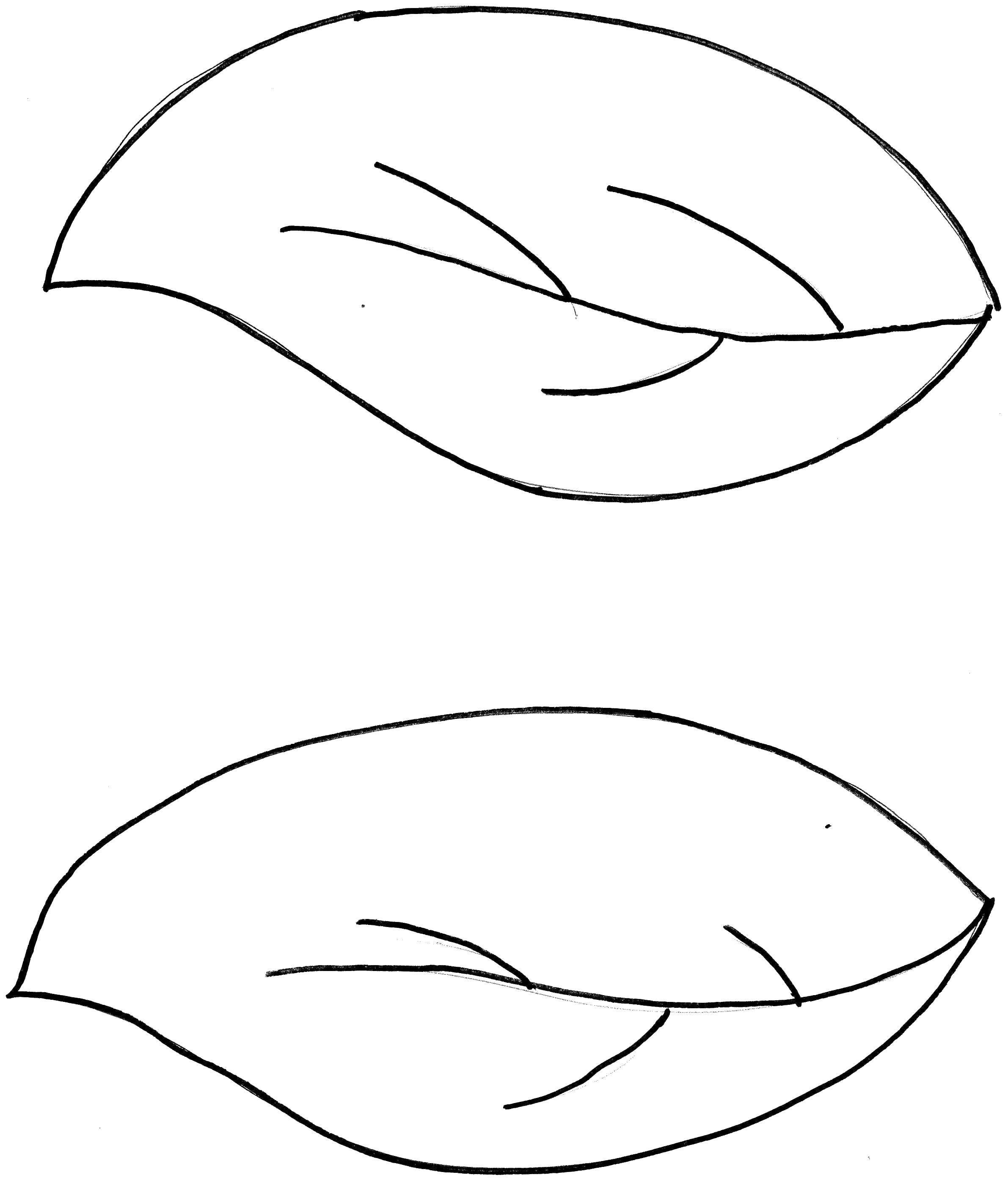 Листья цветов раскраска распечатать
