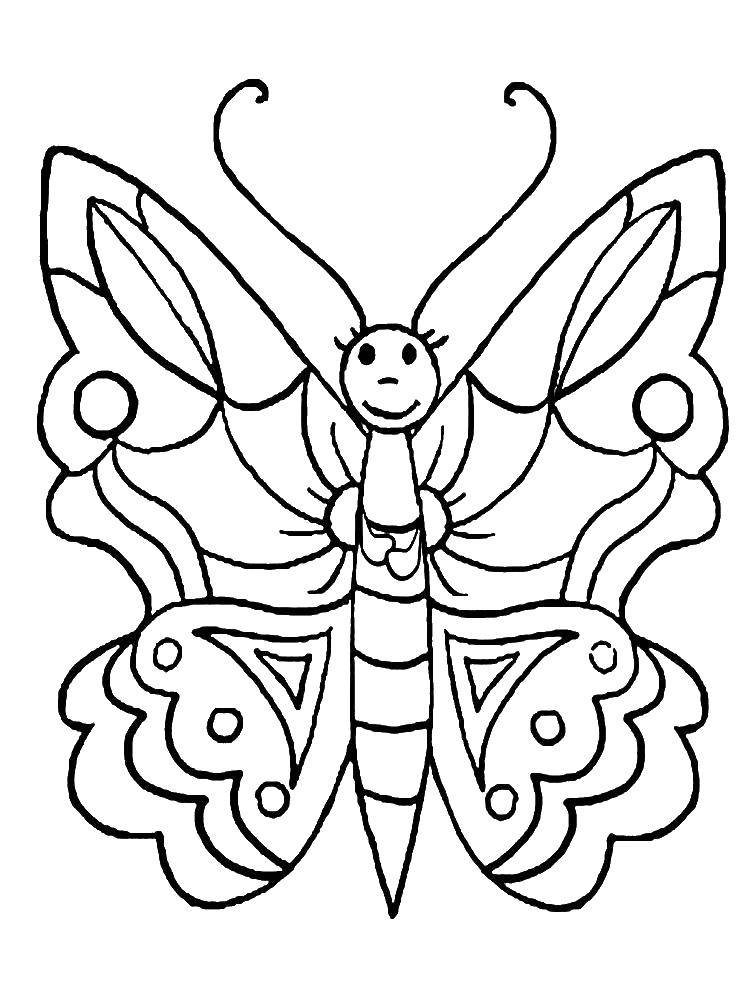 Coloring sheet butterfly Download ,cartoons, children,.  Print