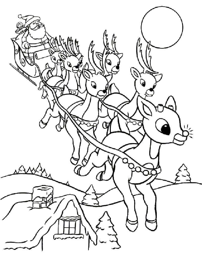 Coloring Santa Claus on sledge with deer Download Christmas,Santa Claus,.  Print