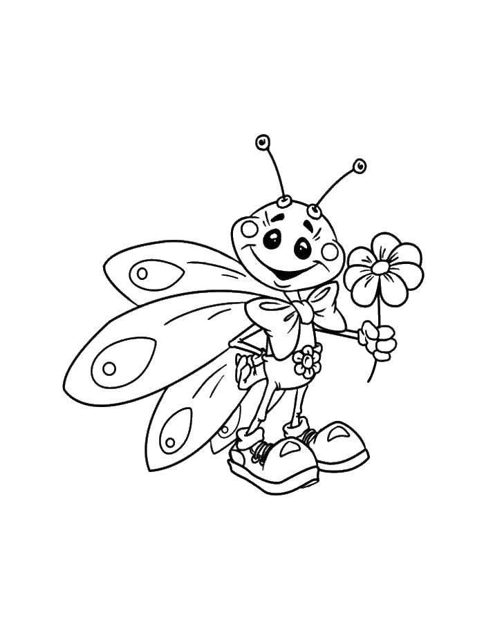 Раскраски бабочка, Раскраска Бабочка с простыми крыльями ...