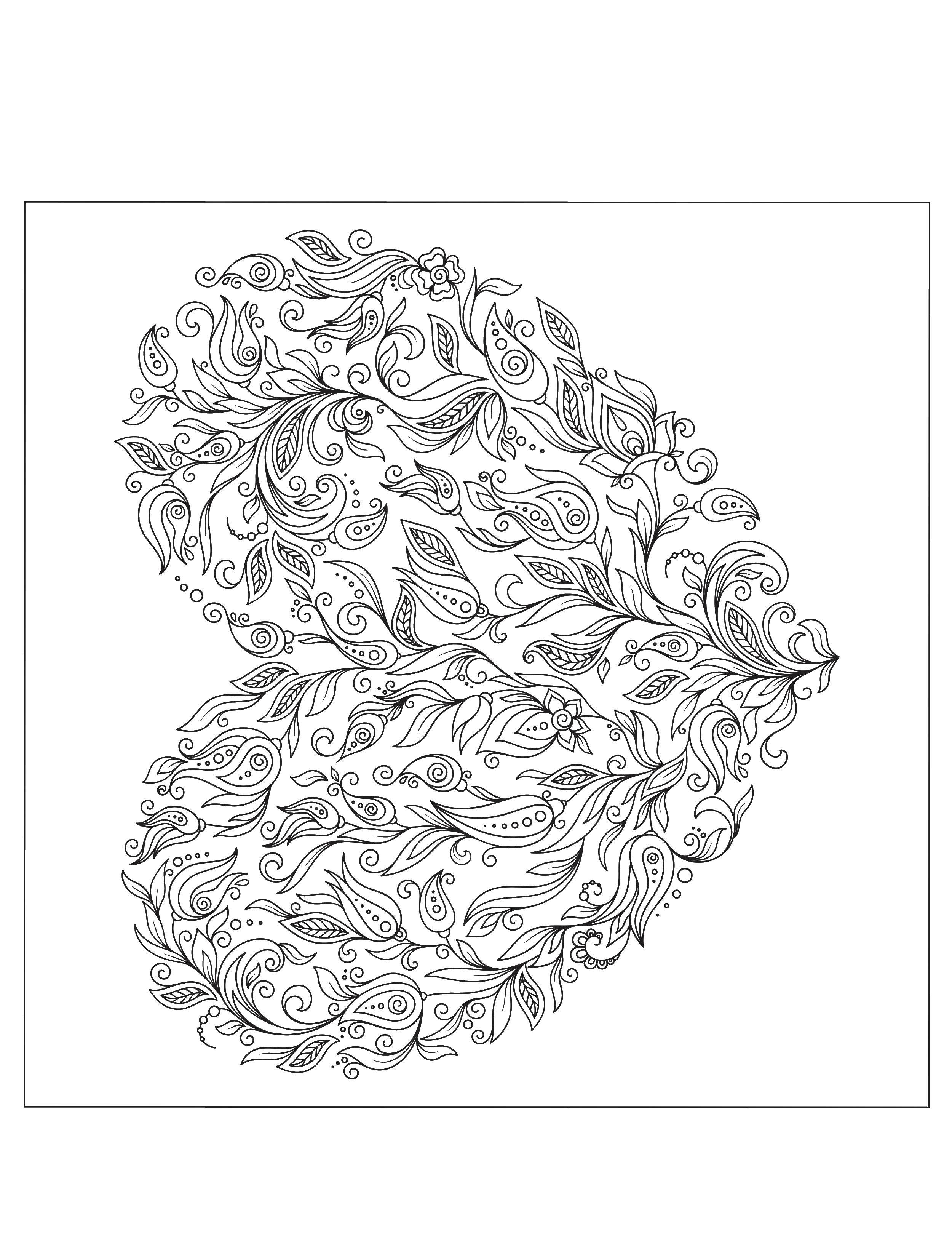 Coloring sheet patterns Download how to draw animals, birds.  Print ,how to draw by stages in pencil,