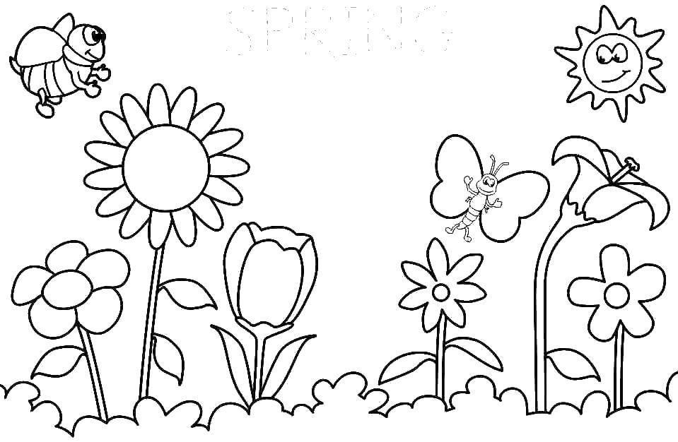 картинка цветы раскраска лето строительства