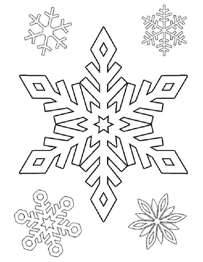 Coloring sheet snow Download Animals, horse,.  Print