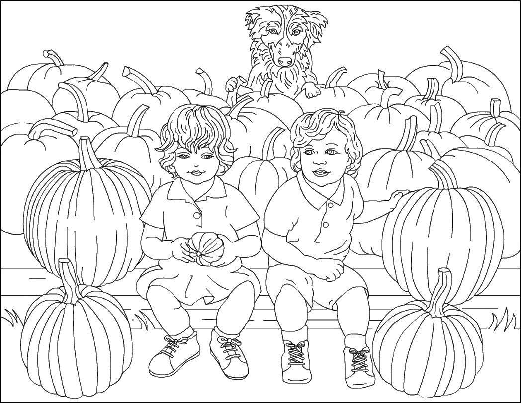 Раскраски Раскраска Баклажаны овощи, скачать распечатать ...