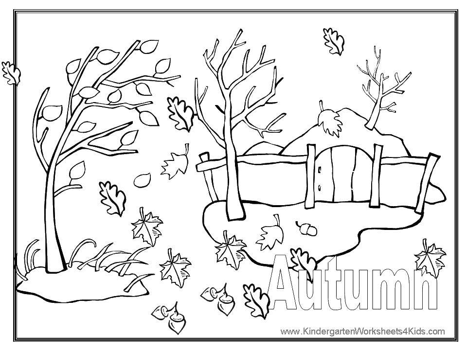 Coloring sheet Autumn leaf fall Download Warrior , knight.  Print ,the Rangers ,