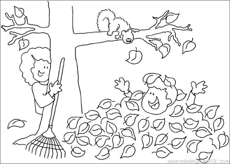 Раскраски собирают, Раскраска Дети собирают листья Осенний ...
