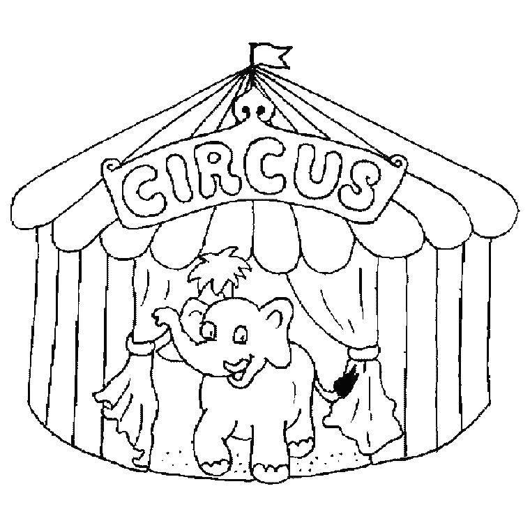 Картинка цирка для раскрашивания