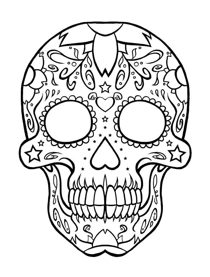 Coloring sheet skull Download Nature, forest, mountains, palm,.  Print