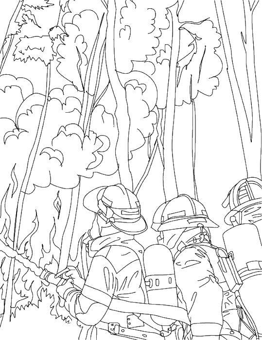 Coloring Burning forest Download Fire, fire.  Print ,Fire,
