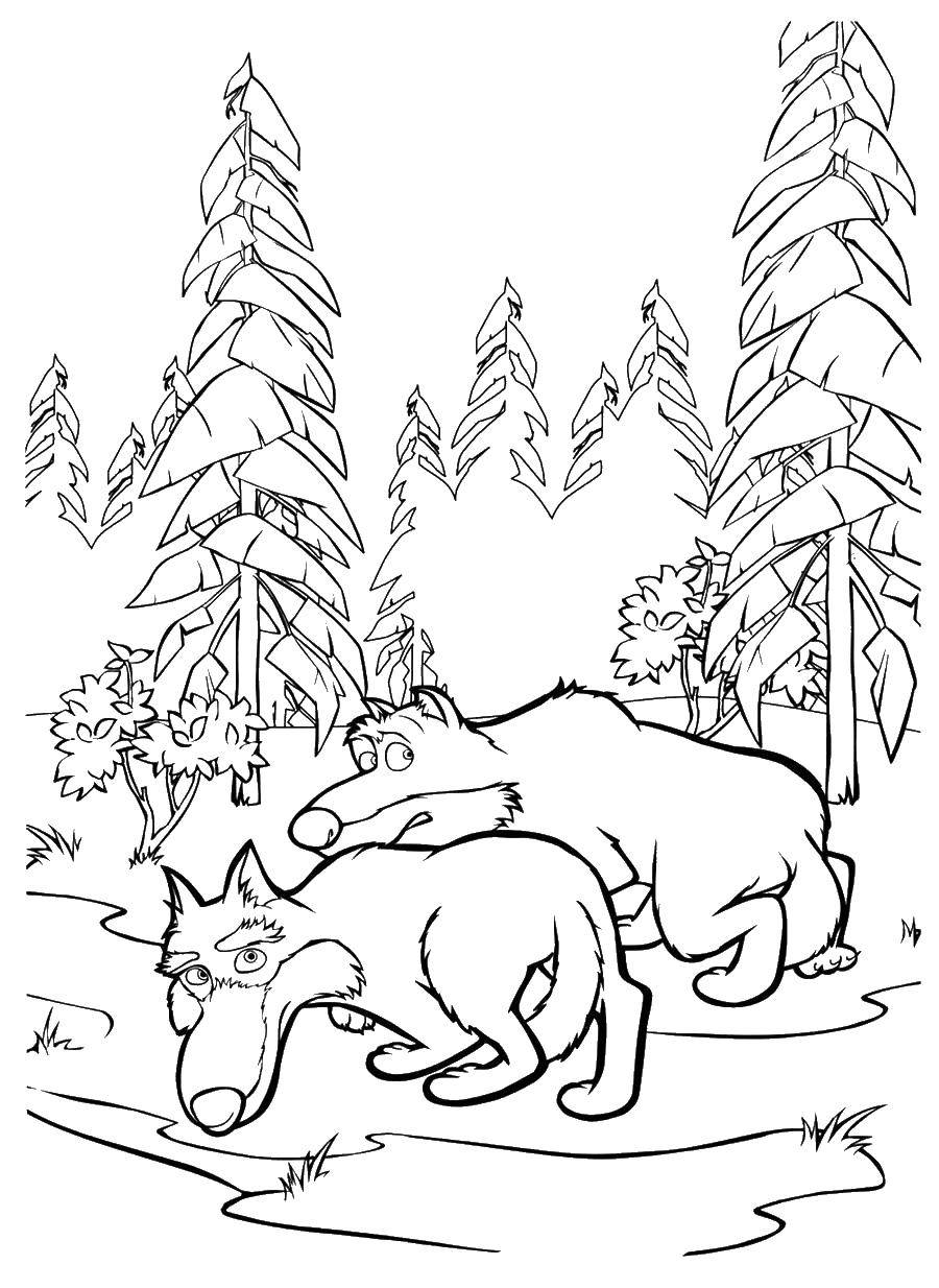 Coloring sheet forest Download angry birds.  Print ,angry birds,