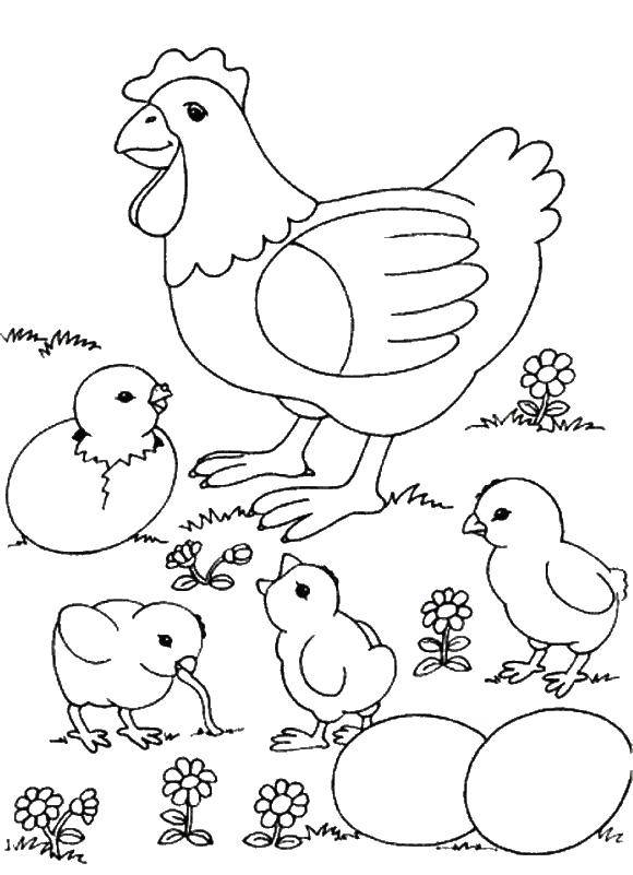 Coloring sheet birds Download The sample numbers,.  Print