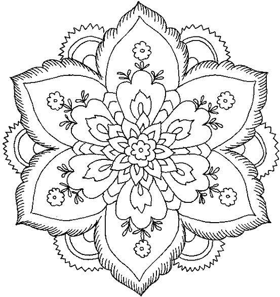 Coloring sheet flowers Download Forest, birch.  Print ,the forest,