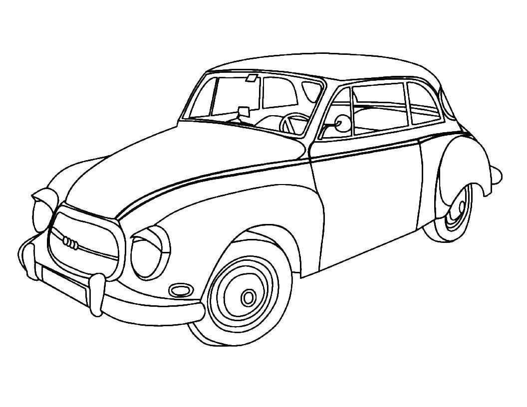 картинки авто раскраска популярные цветниках средней