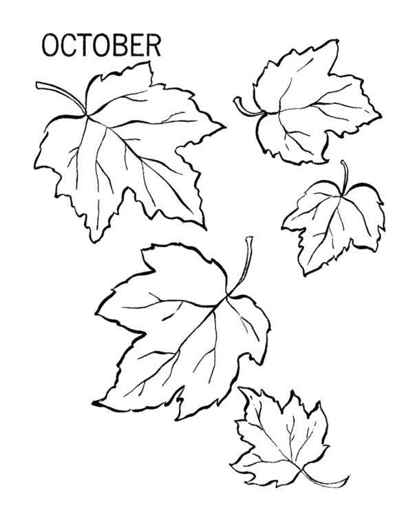 Раскраска Осень Скачать .  Распечатать
