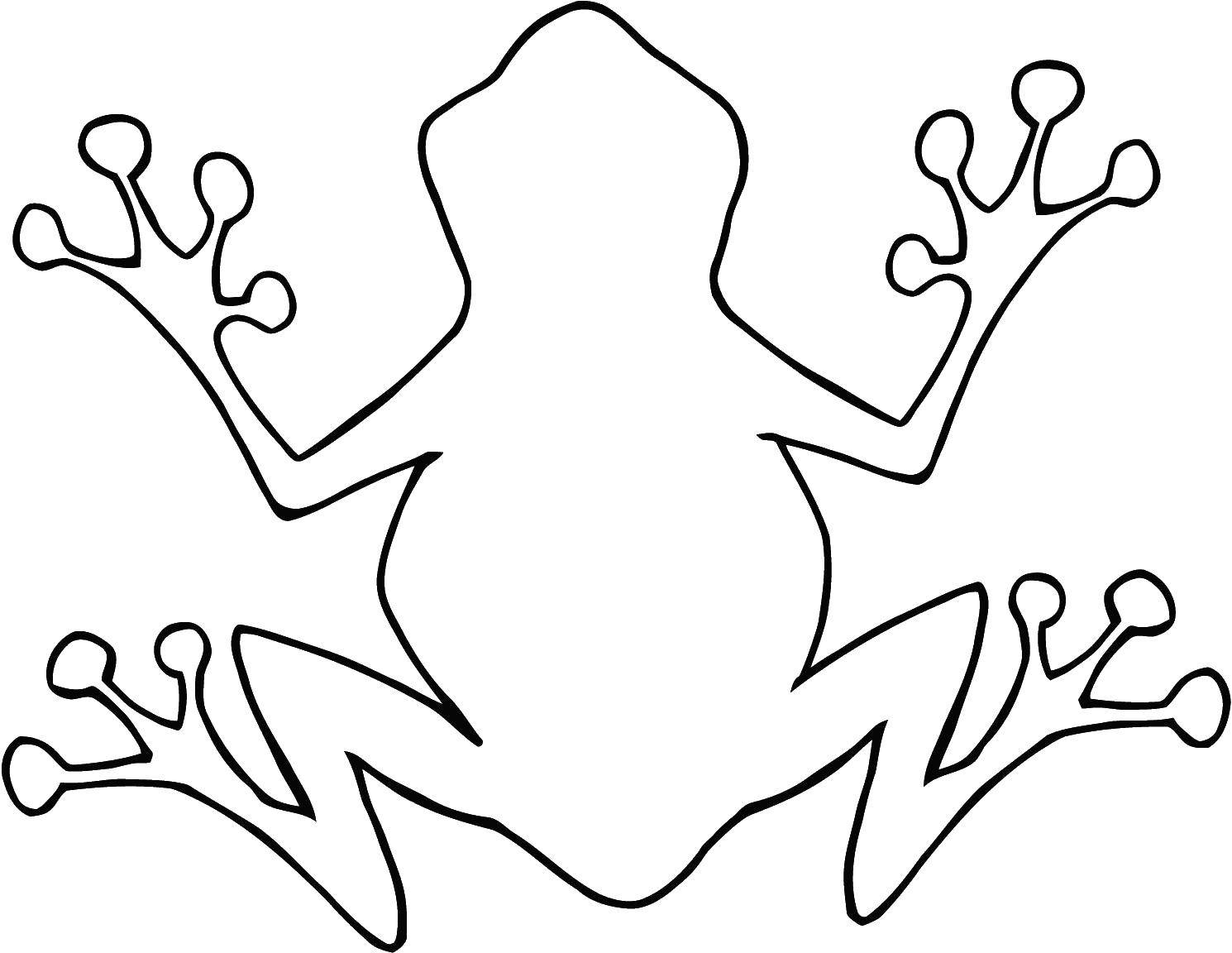 Coloring Frog. Category The contours of animals. Tags:  the frog, the outline of lagowski.