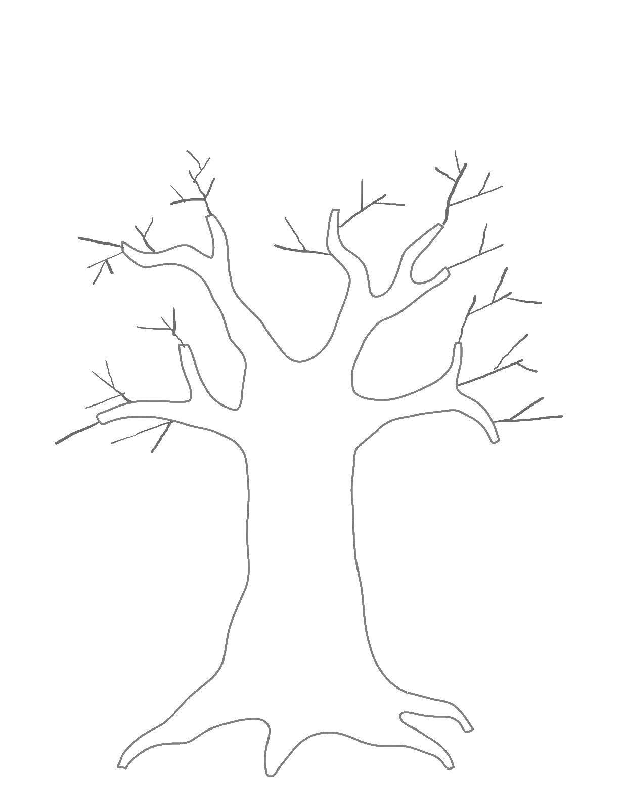 ствол дерева раскраска для малышей