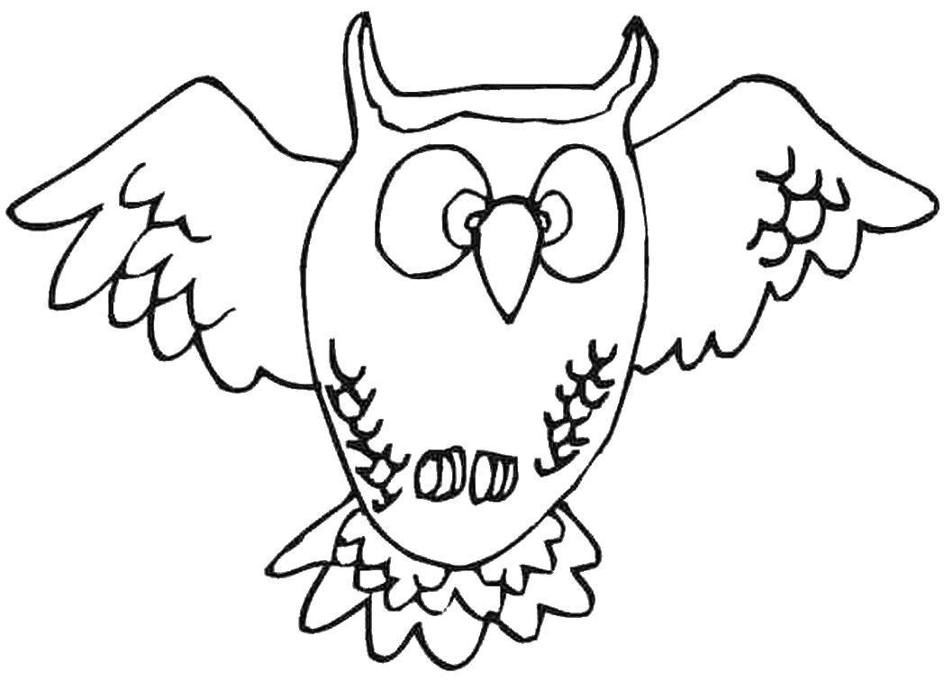 Картинка раскраска сова летит