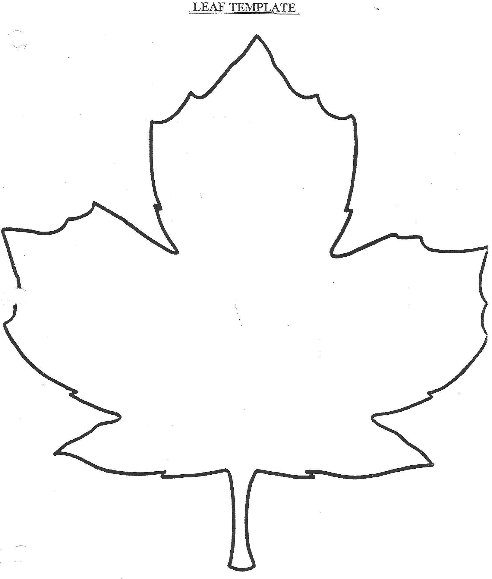Coloring Sheet Download the outline of the leaf, leaves.  Print ,The contours of the leaves of the trees,