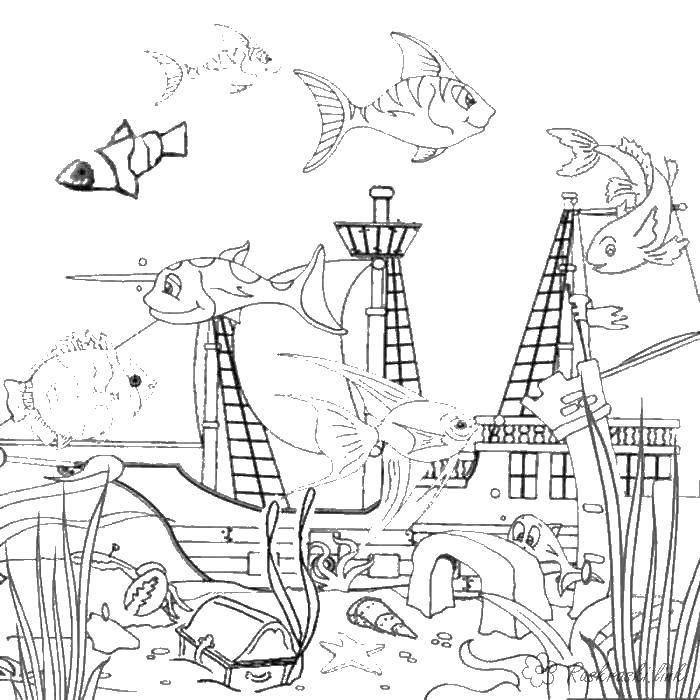 Раскраска рыбы Скачать Поиск предметов.  Распечатать ,Найди предметы,