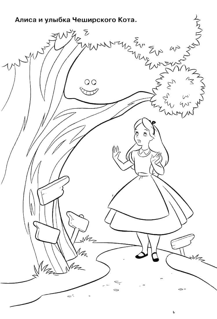 Coloring Alice and the Cheshire cat smile Download tale, Alice, the Cheshire cat.  Print ,Fairy tales,