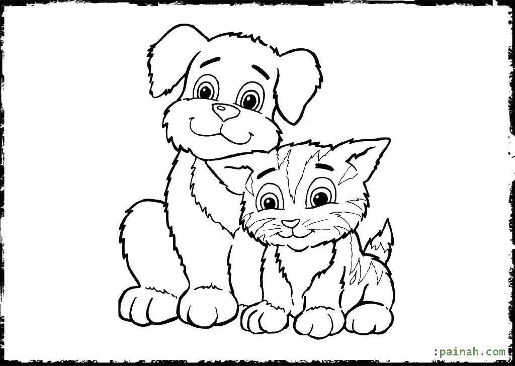 что-то рисунки маленьких щенят и котят самаре, снимаю