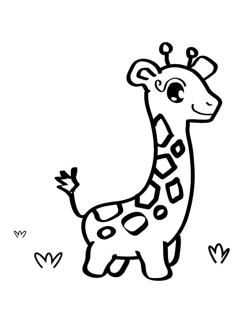 Coloring sheet Animals Download Fairy, tale.  Print ,fairies,