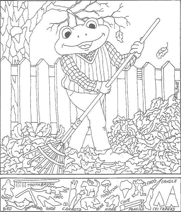 Раскраска Лягушка убирает листья Скачать ,найди предметы, лягушка,.  Распечатать