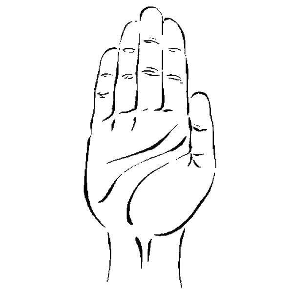 решение картинки пальцы для раскрашивания крупнейший художественный